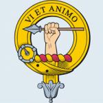 Viet Animo